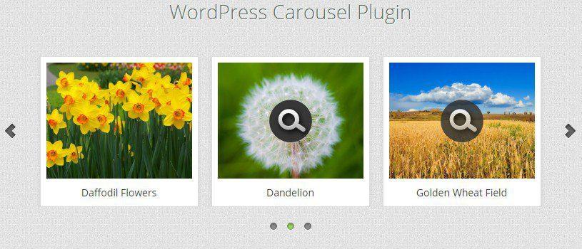 WonderPlugin - без ссылок и логотипа