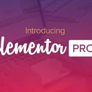 Elementor Pro + Elementorism Лендинги