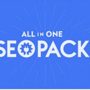 All in One SEO Pack Pro + Addons