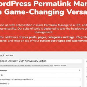 Permalink Manager Pro - управление постоянными ссылками WordPress