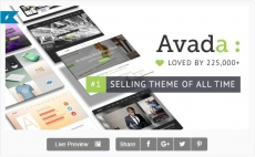 Самая продаваемая тема wordpress — Avada 5.7.2