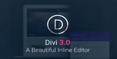 Divi Pack — Тема + PSD Файлы + Divi Builder плагин + Divi Bloom плагин форм и интеграции автореспондеров