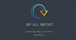 WP All Import Elite + Export Lifetime — плагины импорта и экспорта